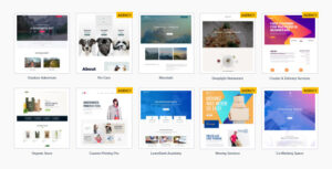 Astra Premium Sites 2.3.5 Nulled - Ready to Import Starter Websites