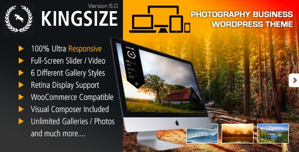 KingSize 6.0 - Fullscreen Photography Theme