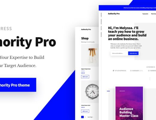 Authority-Pro-Theme-Package-Nulled-Download