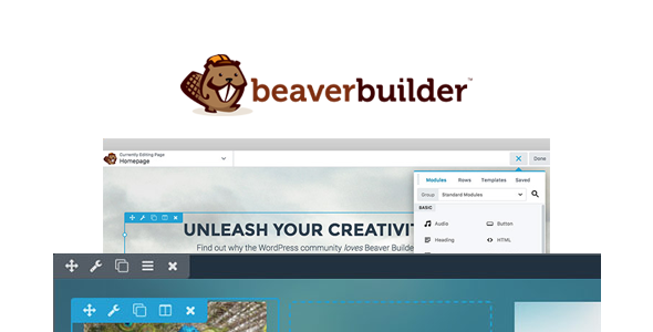 Beaver Builder Pro 2.4.0.5 - WordPress Page Builder Plugin