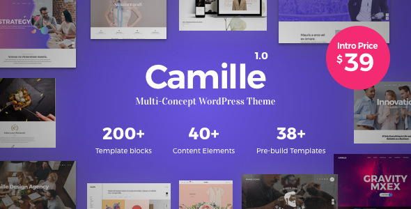 Camille 1.0.5 - Multi-Concept WordPress Theme