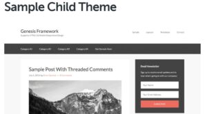 sample-child-theme-Nulled-Download