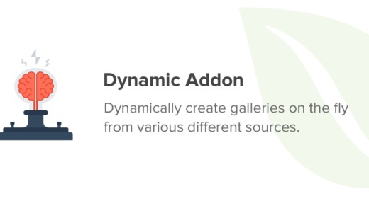 Envira-Gallery-Dynamic-Addon-Nulled-download
