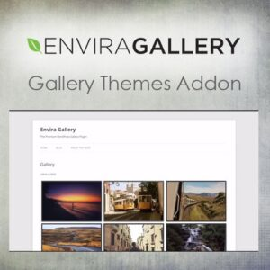 Envira-Gallery-Gallery-Themes-Addon-Nulled-Download