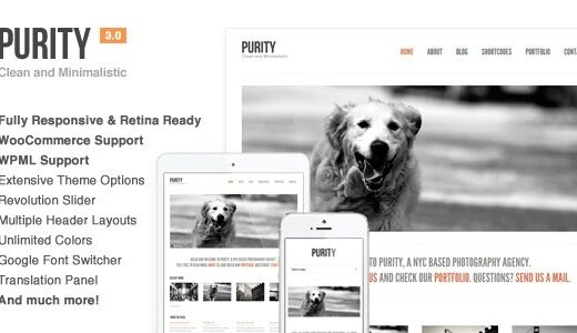 Purity-Nulled-Responsive-Minimal&Bold-WP-Theme-Download