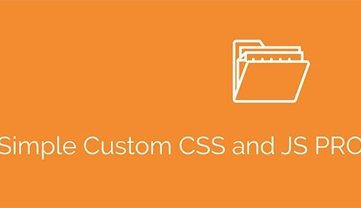 Simple-Custome-CSS-abd-JS-Pro-Nulled-Download