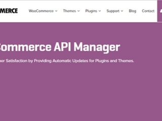 Woocommerce-Api-Manager-Nulled-Download