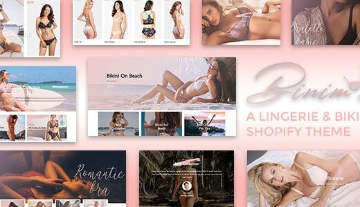 Binim-Nulled-Lingerie&Bikini-Responsive-Shopify-Download
