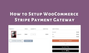 Setup-WooCommerce-Stripe-Payment-Gateway-Nulled-Download