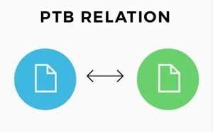 Themify-PTB-Relation-Nulled-download